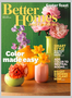Subscription To Better Homes & Gardens